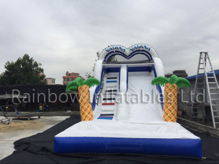 RB6093 (8x4x5m) Inflatable The theme of romance water Slide