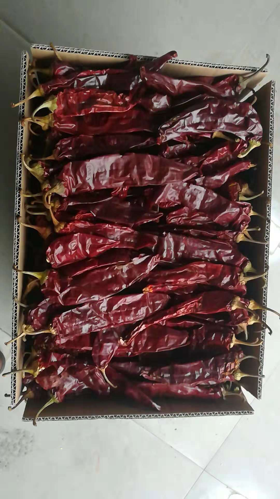 Sun Dried Red chili Paprika Pods with Stem