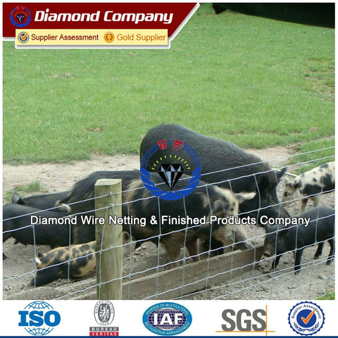 cattle fencing panels,animal fence,deer fence/horse fence/hog wire fencing