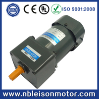 60W Reinforced Ac Induction Motor