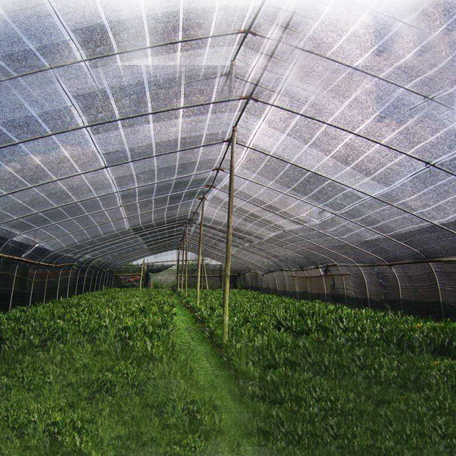 HDPE White color Flat Shade net 70gsm