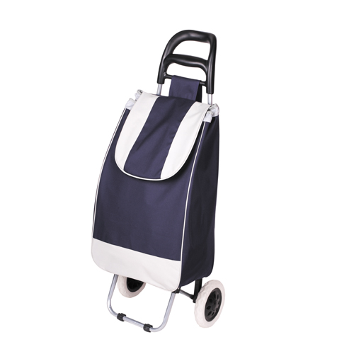 Hot Sales Metal Frame Portable Shopping Trolley Bag