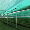 HDPE Flat Green color Shade net 70gsm