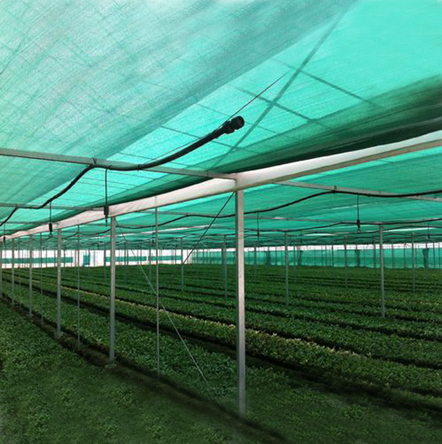 HDPE Green color 150gsm Shade net