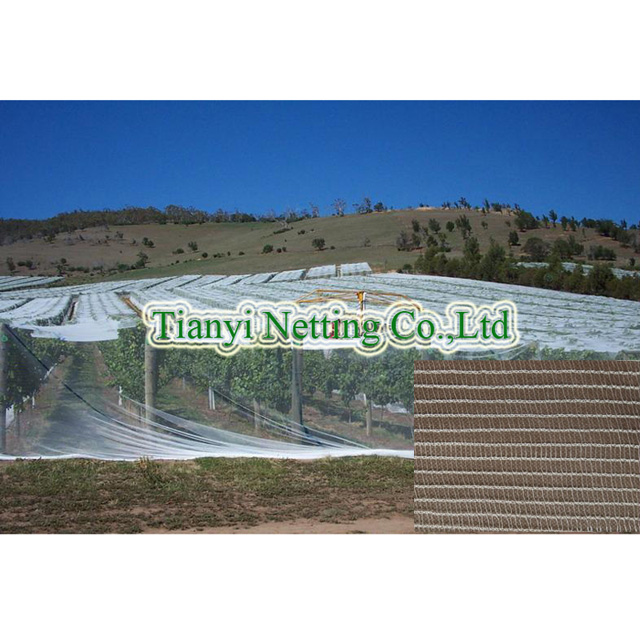 HDPE 60gsm transparent color anti bee net