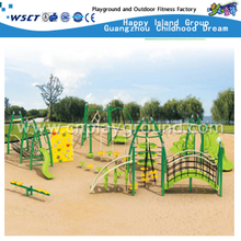 Large Scaled Climbing Children Metal Structure Playground (HA-11901)