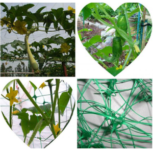 HDPE/PP 10gsm white or green color planting net/plant support net
