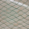 HDPE 18gsm 5X3M greencolor Anti Bird Net