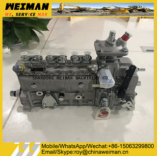 3913902 DCEC 6BT Engine Parts Injection Pump