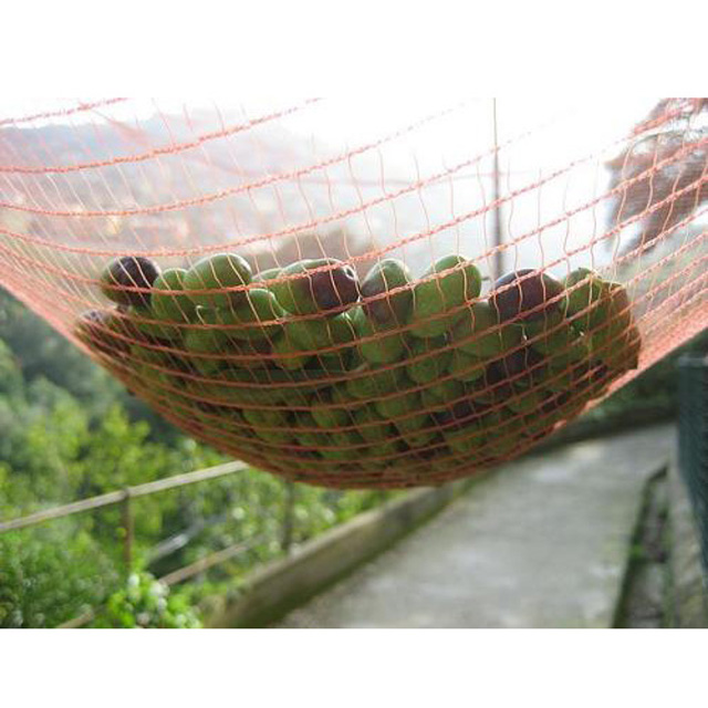 HDPE 120gsm white or other color olive net/Harvesting net