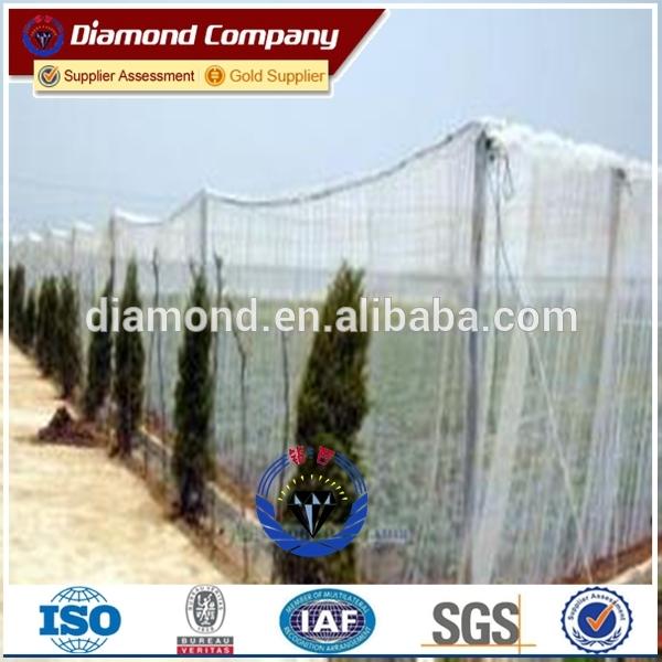 factory directe Selling anti-bird mesh/colored anti-bird screen netting/hdpe+uv bird netting