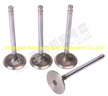 Yuchai engine parts intake valve D30-1003111B