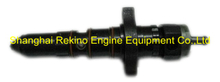 PT fuel injector 3076130 for KTA19-M700 KTTA19-C700