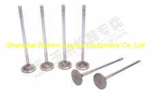 Yuchai engine parts intake valve K6000-1003111
