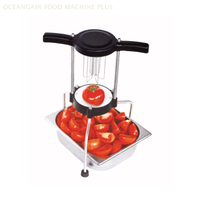 Stainless Steel Multi Manual Cutter for Melon And Fruit ZHFB-12