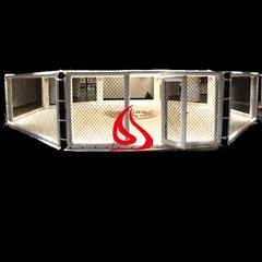 Floor Octagon UFC MMA Cage