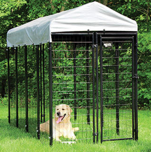 outdoor 4ft x8ft x6ft black welded wire Large dog kennels