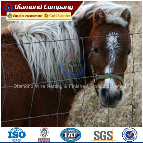 galvanized iron farm/field/land fence used for horses with wood post