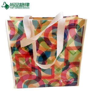 Reusable PP Lamination Nonwoven Laminated Bag (TP-LB142)