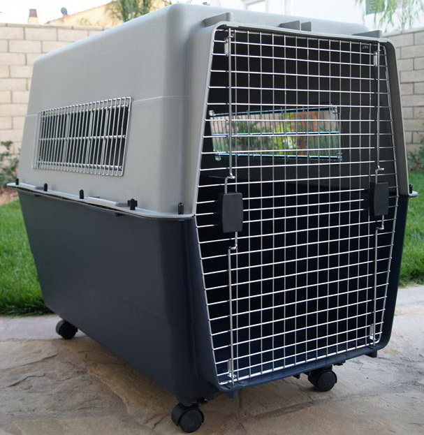 American style Pet Air Travel Carrier