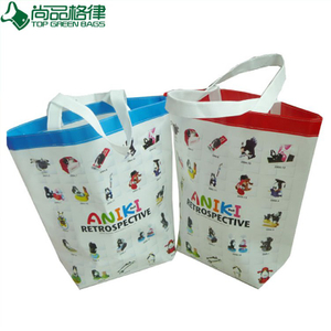 Custom Polypropylene Shopping Tote Laminated Non Woven Bag (TP-LB004)