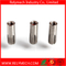 Stainless Steel Drop in Expansion Anchor Bolt