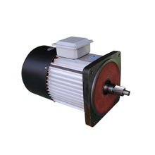 electric hoist motor