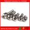 Phillips Pan Head Combination Screw/ Sem Screw/ Screw Nut Washer in Stainless Steel 304