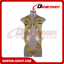 DS5110 Safety Harness EN361