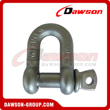 DS365 High Strength Screw Type Dee Shackle for Lifting