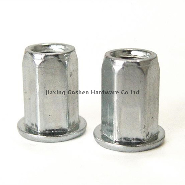 Stainless steel Flat head full hexagonal body rivet nut