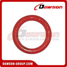 DS038 Forged Alloy Steel Round Ring