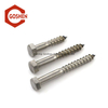 Stainless Steel 304 A2-70 Din571 Wood Screw