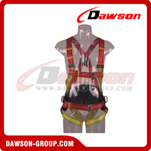 DS5107 Safety Harness EN361