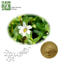 Neuroprotective Bacopa Flavones Bacosides Bacopa Monnieri Extract