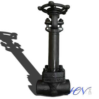 Low Temperature Carbon Steel Extended Bonnet Solid Gate Valve