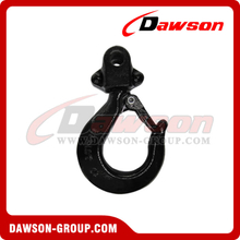 DS254 Forged Block Hook