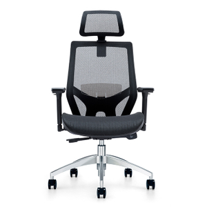 Fashion Ergonomic Mesh Office Chair 709A