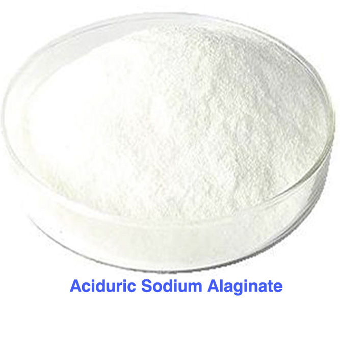 Sodium acidurique Alaginate