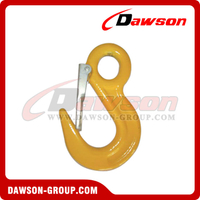 DS113 Alloy Eye Hook with Latch