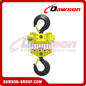 DS-DF-D 100T Chain Hoist, Chain Block