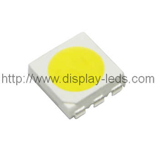5050 PLCC6 Top SMD LED in White