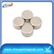 40*10mm Neodymium Magnetic Disc