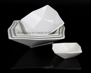 Dinner Ware with Melamine (TP-2027)