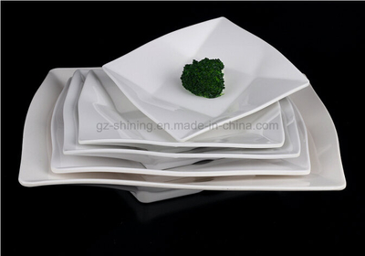 Dinner Dish with Melamine for Kitchenware (TP-6253)