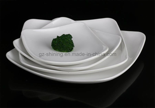 Tableware Dish with Melamine for Food (TP-4116)