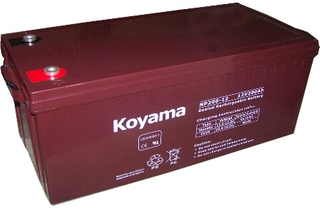 NP Series-VRLA AGM BATTERY