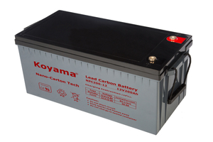 12V 200AH High Quality Deep Cycle Lead Carbon Battery NPC200-12