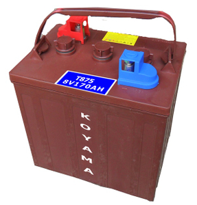 Aerial Work Platform/Access Flooded Deep-Cycle Battery