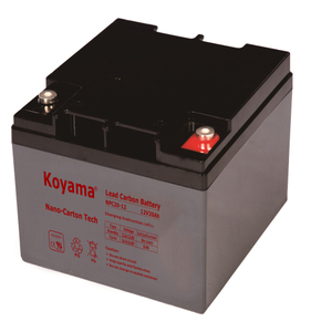 12V 20AH High Quality Deep Cycle Lead Carbon Battery NPC20-12